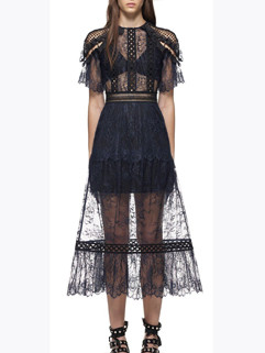 Sexy Semi Sheer Lace A Line Fashion Dress