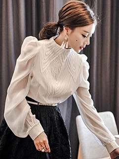 Korean Stand Collar Lantern Sleeve Blouse