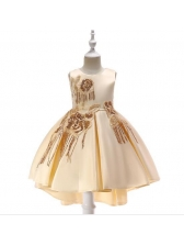 Fashion Tassel Sequined Fitted Pretty Dress For Girl