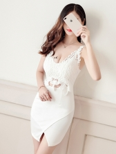 Lace Patchwork Hollow Out Fitted Sexy Dress